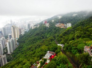 Hong Kong Hillside