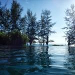 Renaissance Phuket Resort - Infinity Pool